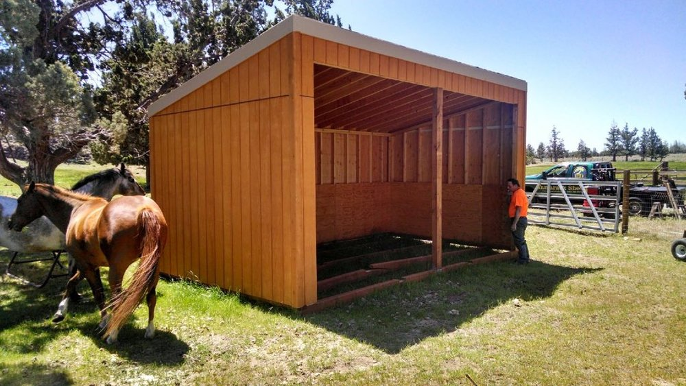 images best shed horse stables stalls pinterest sheds on fxgal loafing and