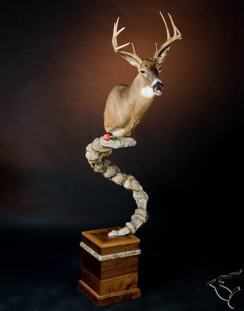 Spiral Deer.jpg
