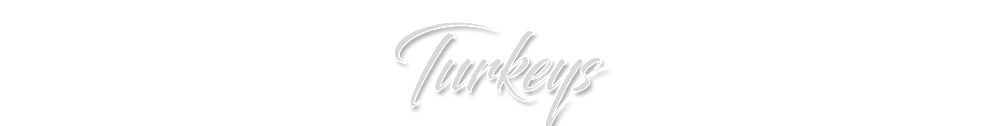 TURKEYS.png