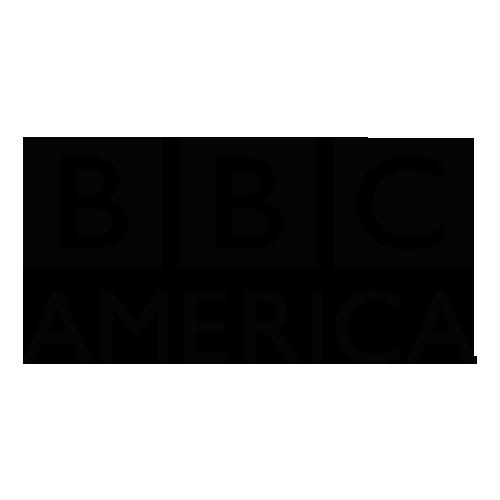 bbcamerica_logo-TRANSPARENT.png