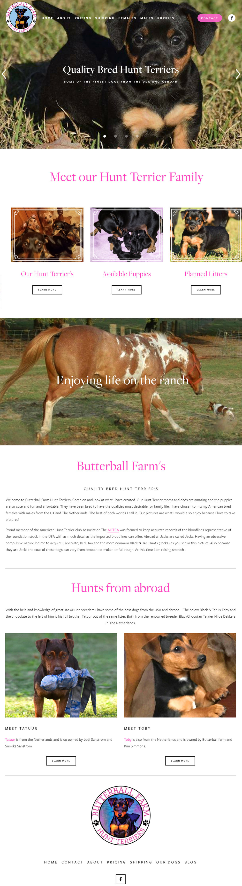 Butterball Farm Hunt Terriers