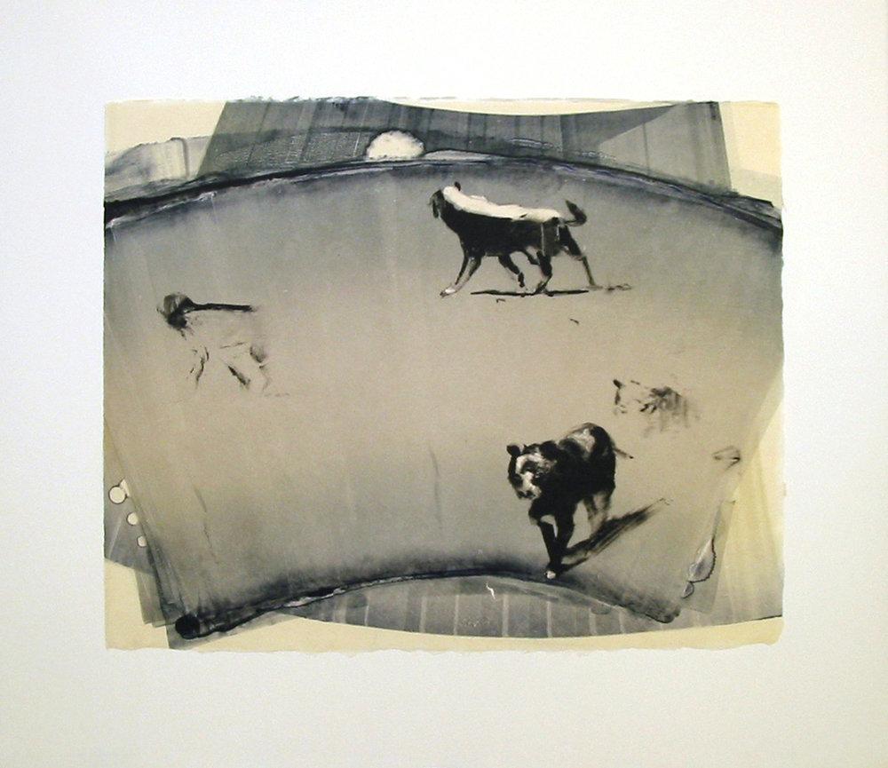 """""""Approach"""" by Joel Janowitz 2005"""