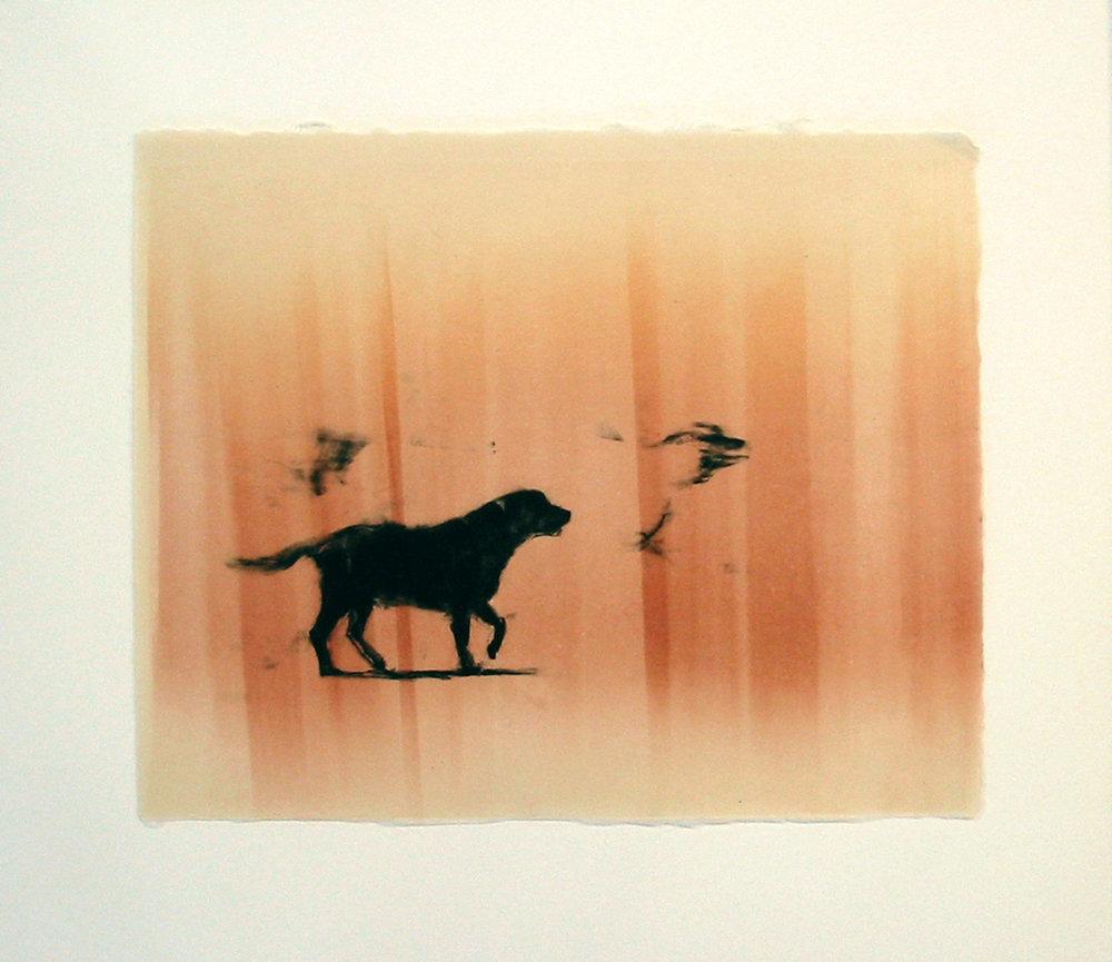 """""""Lone"""" by Joel Janowitz 2005"""