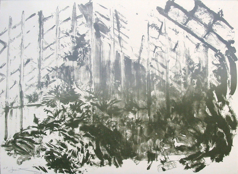 """Wash Greenhouse"" (unique) by Joel Janowitz 2005"