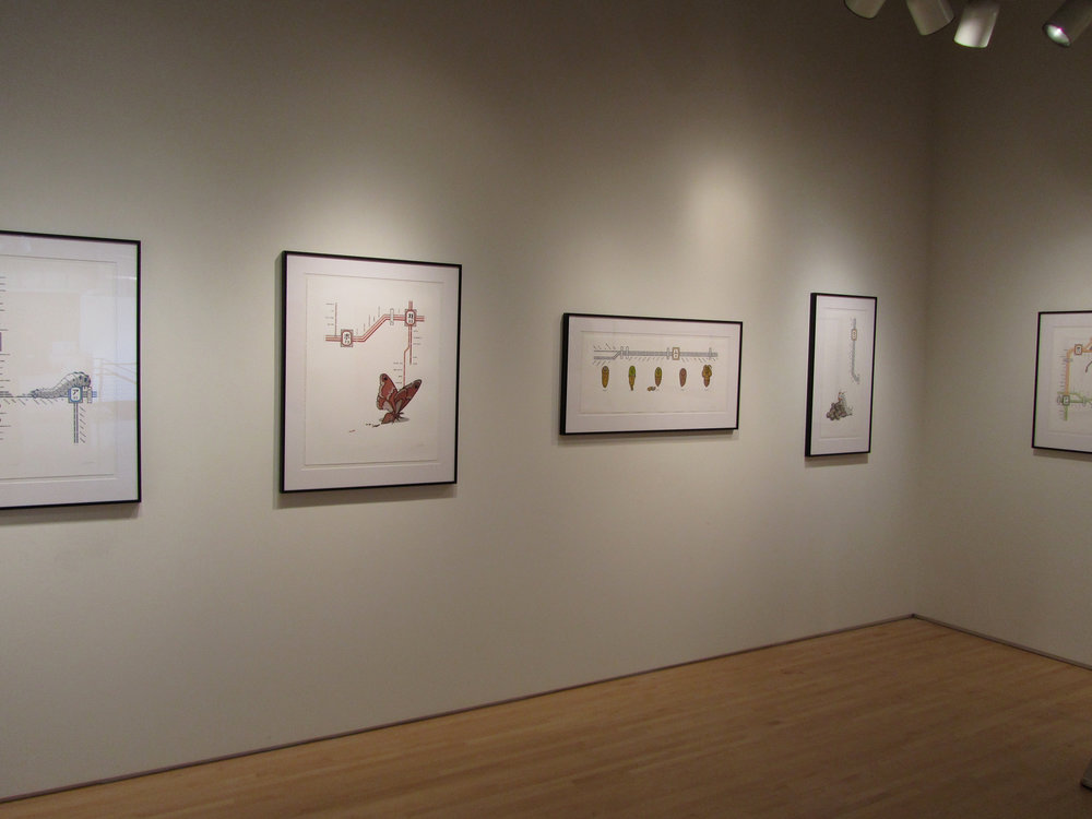 installation-of-the-2010-2011-jerome-emerging-printmakers-exhibition_5734171653_o.jpg