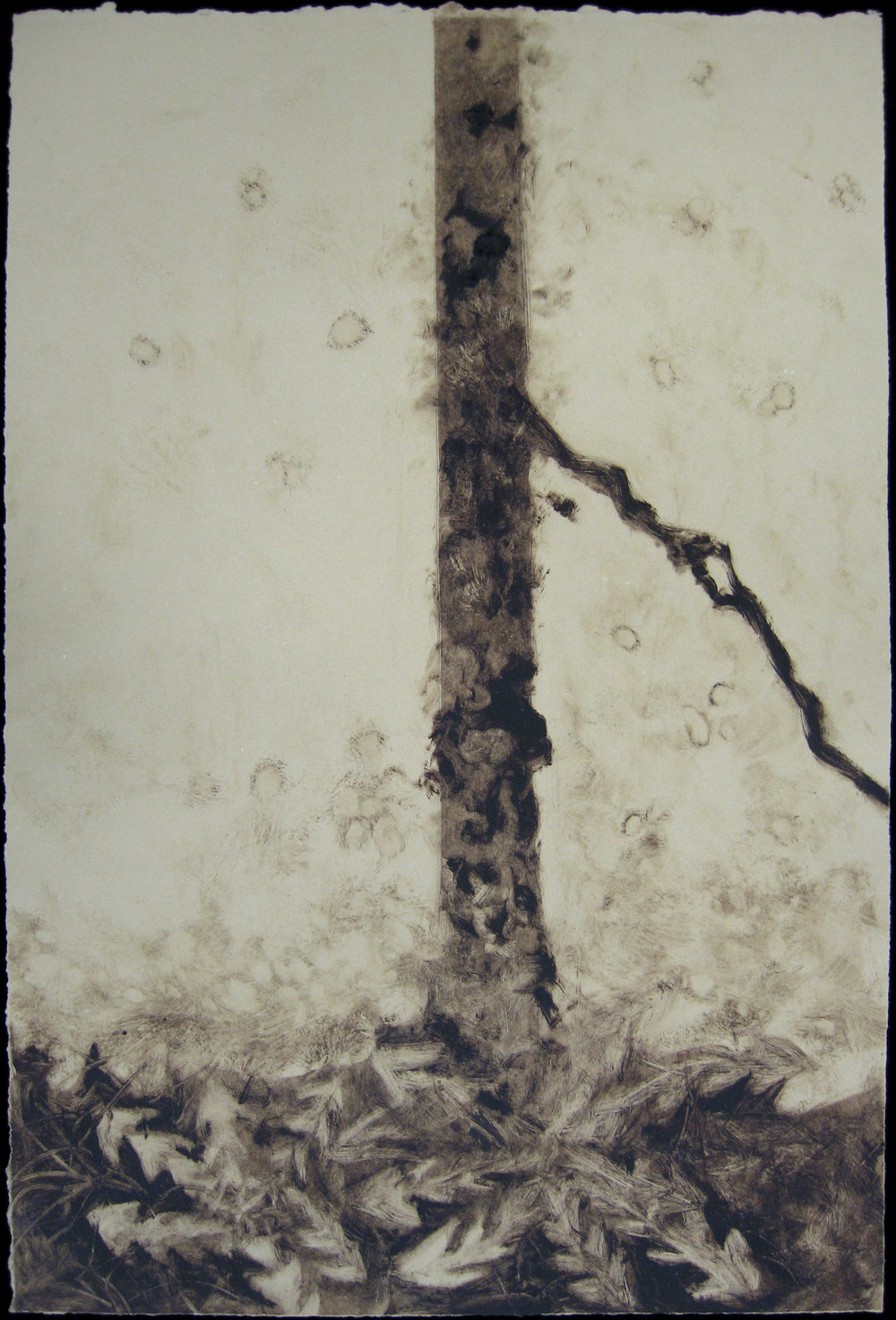 sidewalk-cracks-tan-3-by-emily-hoisington-2009_5346178063_o.jpg