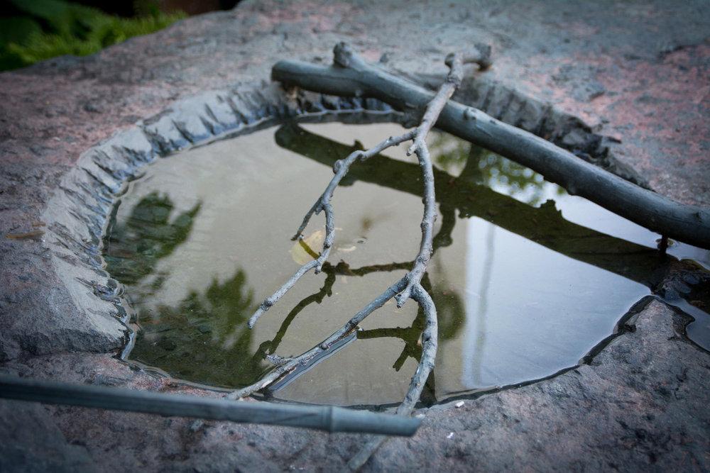 Highpoint Printmaking Rain Garden160805a101.JPG