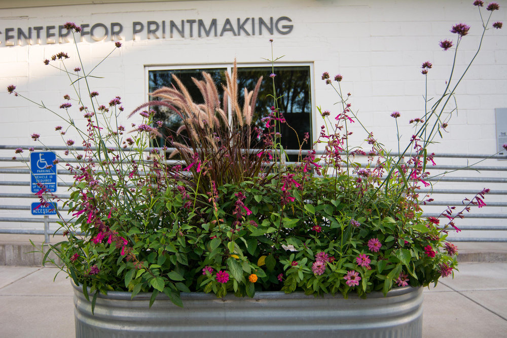 Highpoint Printmaking Rain Garden160805a010.JPG