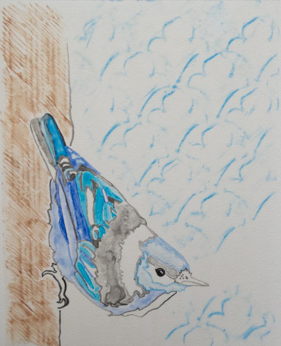 Megan Anderson   Bird   Monotype