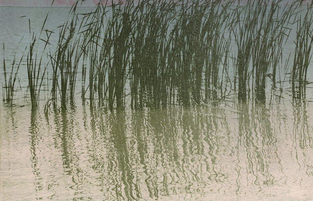 Pamela Carberry   Homage: Marsh   Intaglio and wood intaglio