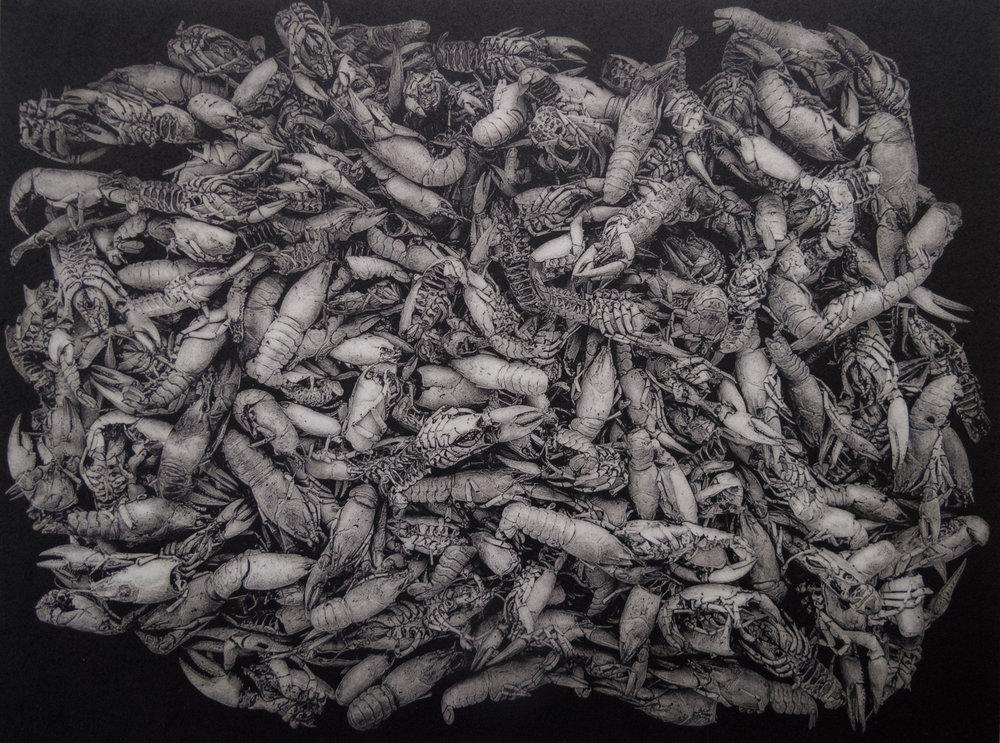 John Pearson   Crayfish   Polymergravure
