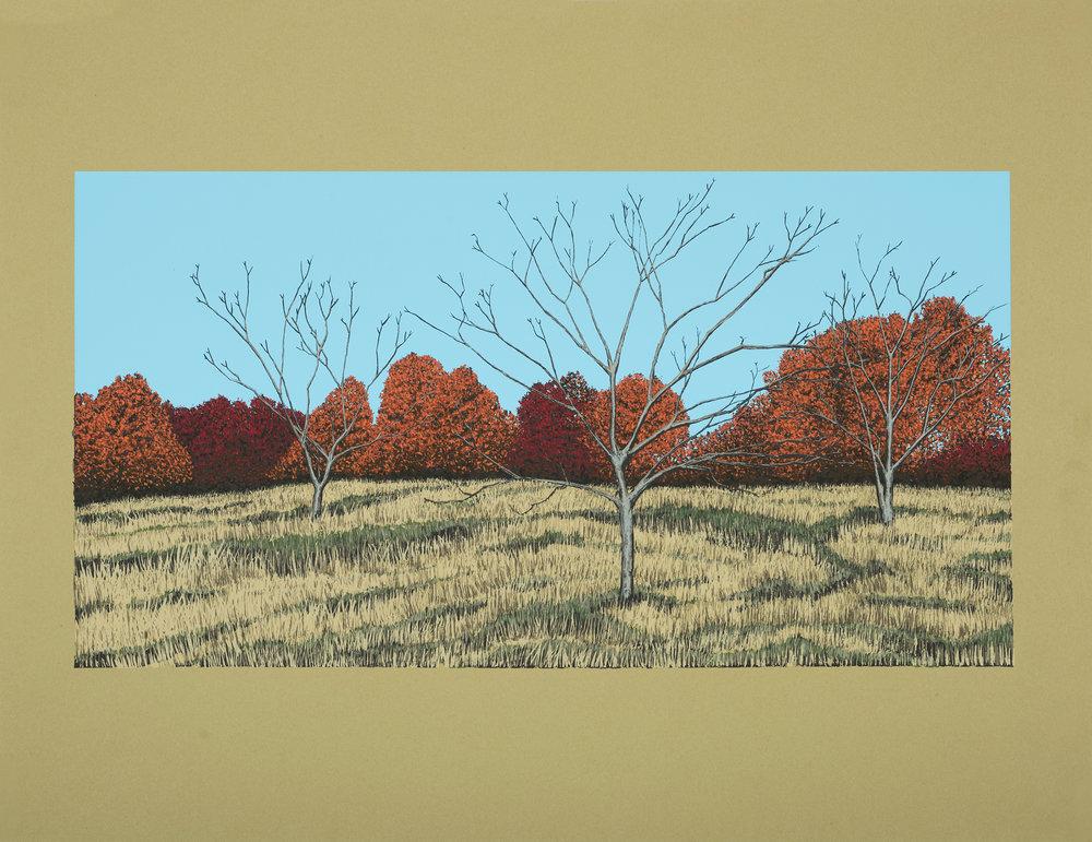 A few trees (U of M Arboretum),  screenprint