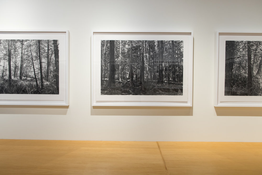 Highpoint PrintmakingPrint Room with Michael Kareken Prints180927a0023.JPG