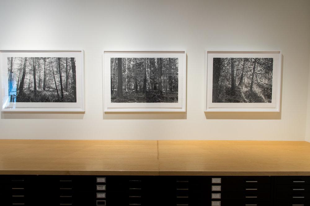 Highpoint PrintmakingPrint Room with Michael Kareken Prints180927a0026.JPG