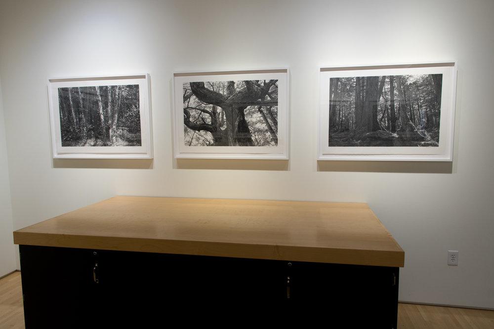 Highpoint PrintmakingPrint Room with Michael Kareken Prints180927a0042.JPG