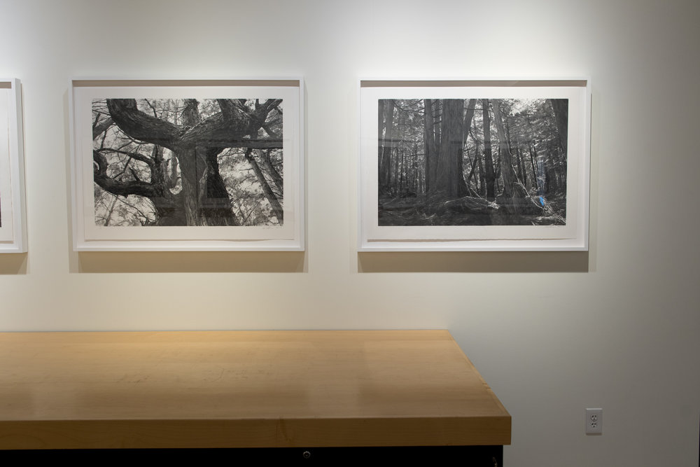 Highpoint PrintmakingPrint Room with Michael Kareken Prints180927a0047.JPG