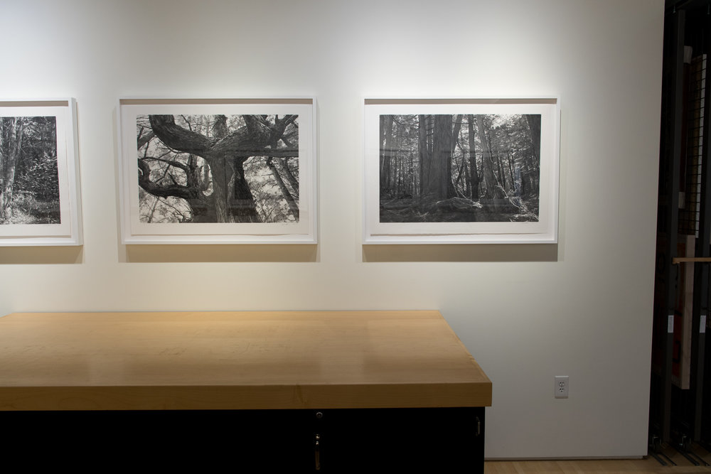 Highpoint PrintmakingPrint Room with Michael Kareken Prints180927a0049.JPG