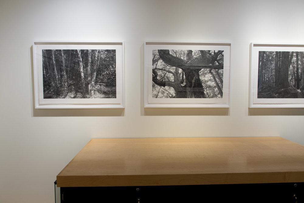 Highpoint PrintmakingPrint Room with Michael Kareken Prints180927a0051.JPG