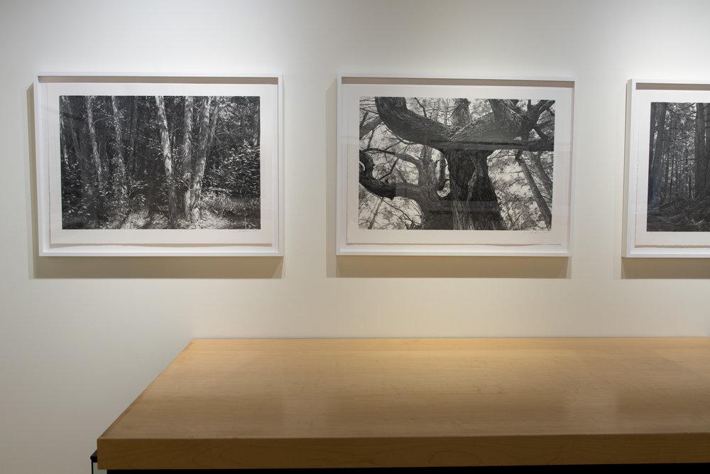 Highpoint PrintmakingPrint Room with Michael Kareken Prints180927a0053.JPG