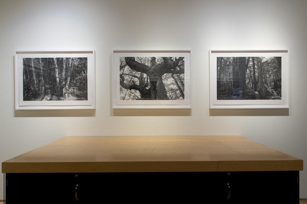 Highpoint PrintmakingPrint Room with Michael Kareken Prints180927a0054.JPG