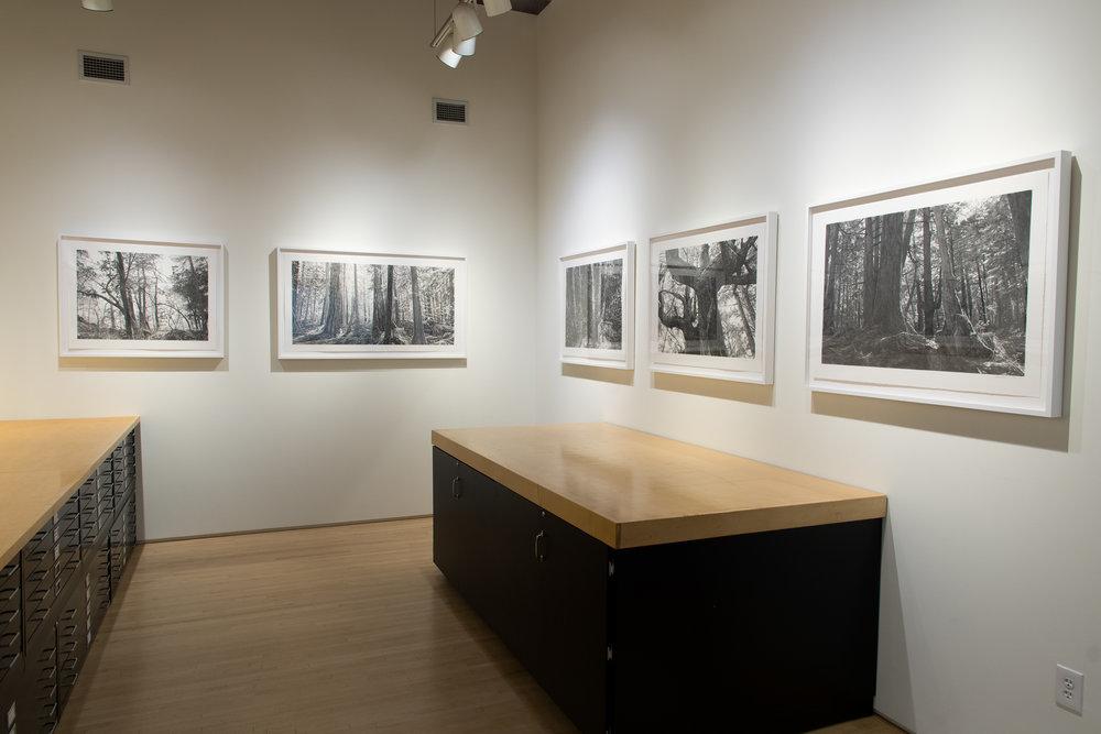 Highpoint PrintmakingPrint Room with Michael Kareken Prints180927a0069.JPG