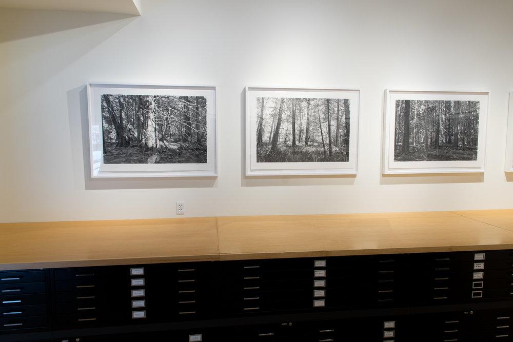 Highpoint PrintmakingPrint Room with Michael Kareken Prints180927a0152.JPG