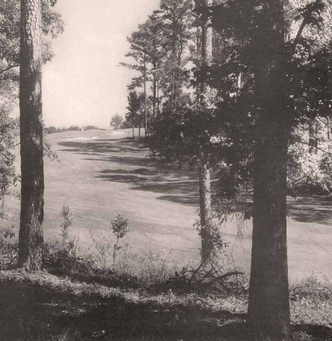 Augusta18_2.jpg