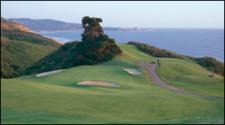 torrey-pines-golf.jpg