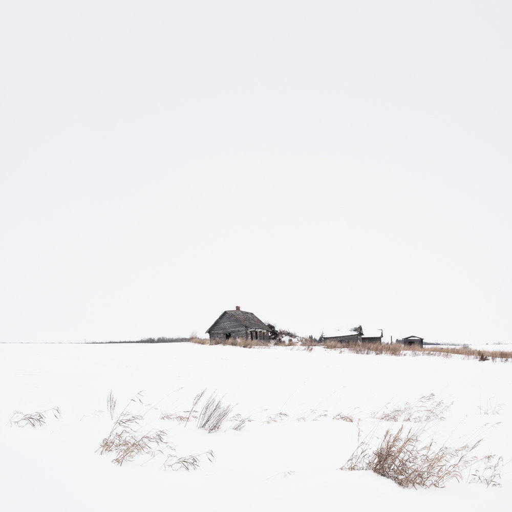Prairie Winter I