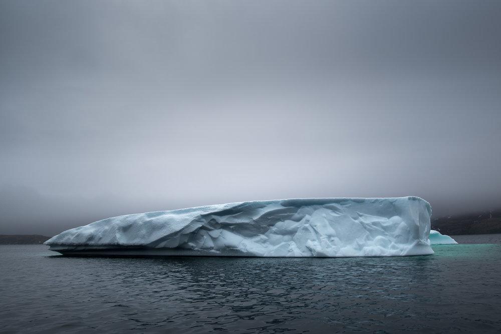 Newfoundland Iceberg IV