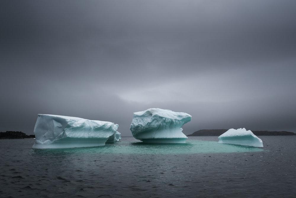 Newfoundland Iceberg II