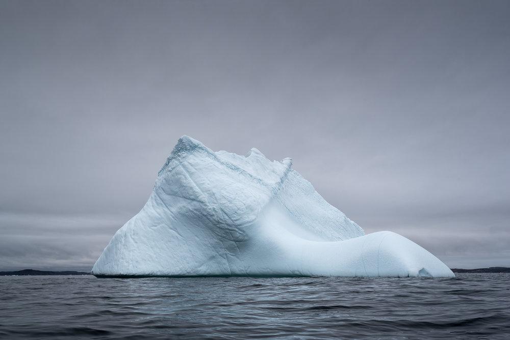 Newfoundland Iceberg III