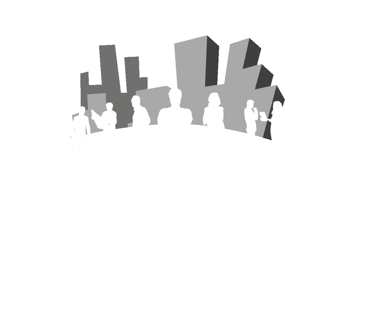 The Project Guys