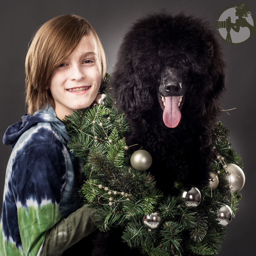 W-Poodle-Labrador-Retreiver-Dog-Melissa-Laggis-1.jpg