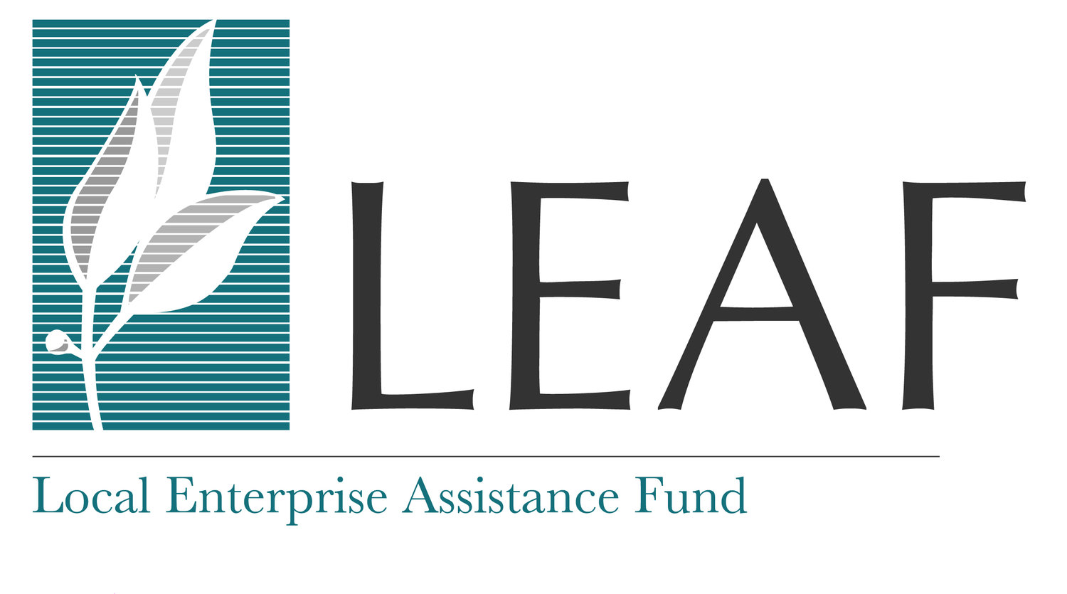 Leaf about about us focus areas our team board lending how to apply for investors portfolio impact contributions and investments prospectus featured businesses publicscrutiny Choice Image