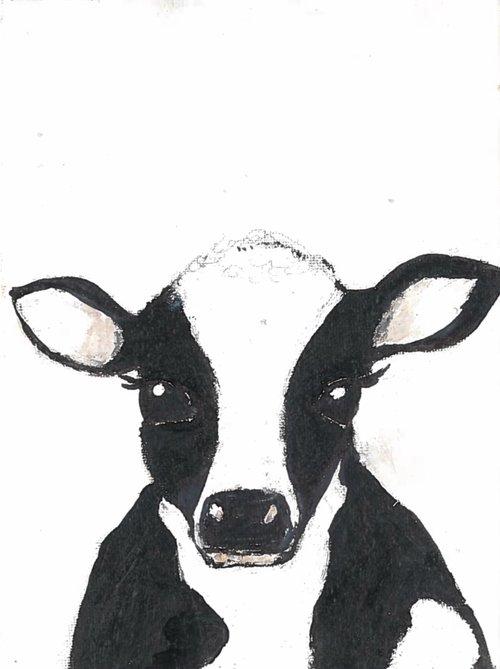 Animal Images Claire Jordan Designs