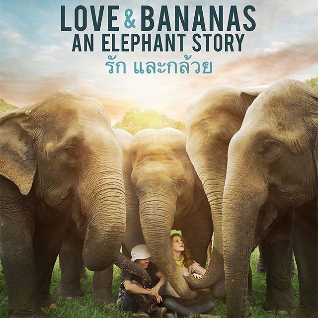 Very excited for @loveandbananasmovie on Deadline today announcing their theatrical release in April!