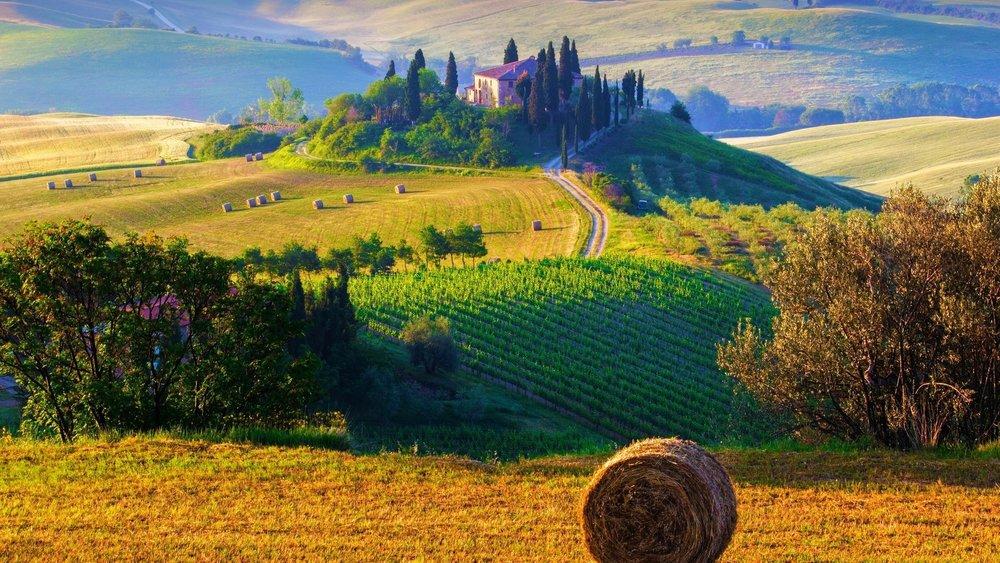 Italian-Agriculture.jpg