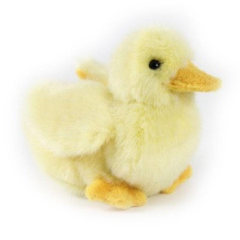 Duck Chick