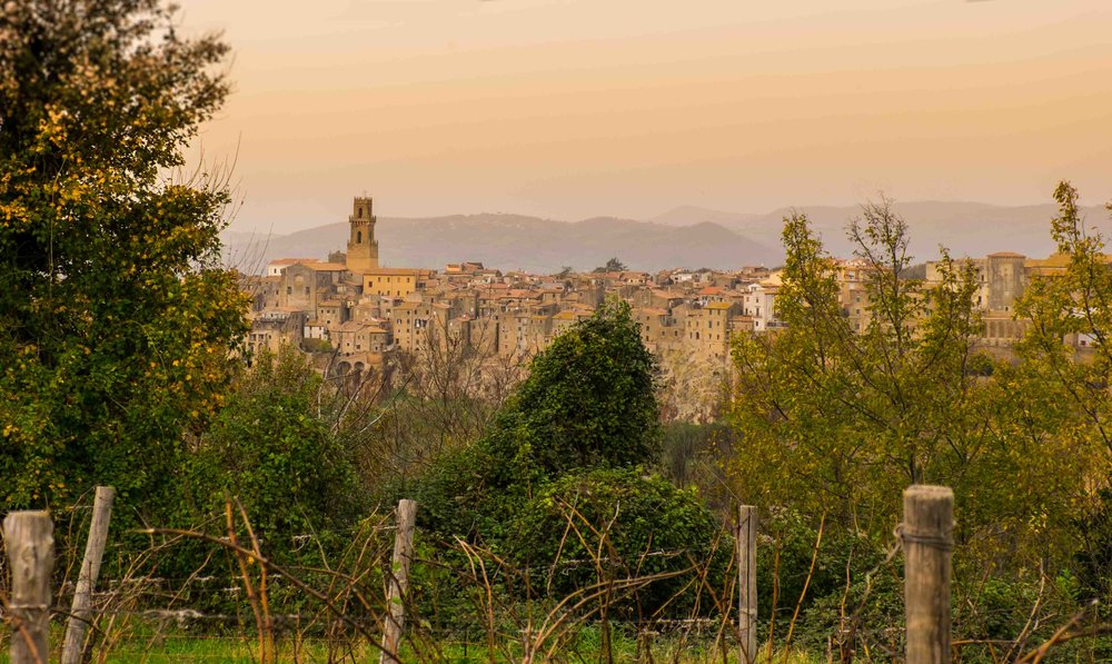 Vineyards in the Pitigliano DOC, with the town in the background| ©John Szabo (published by Jacqui Small)
