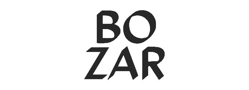 MFF_Partner__Bozar_B.png