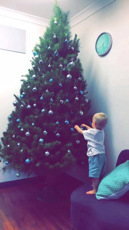 merlinos-cut-christmas-tree.jpg
