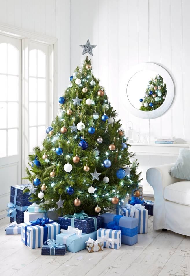 - Live Potted Christmas Trees €� Merlino's Christmas Trees
