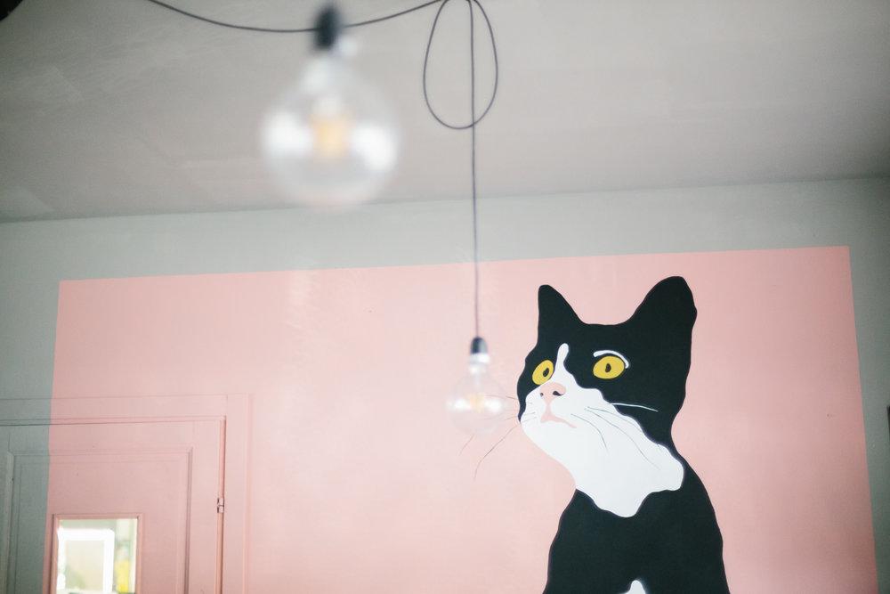Di Cane In Gatto - cat cafè