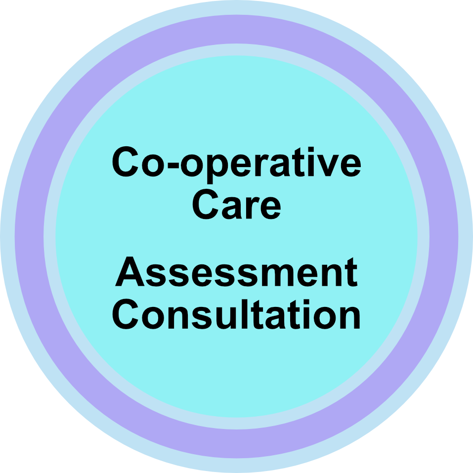 Co-operative Care Assessment.png