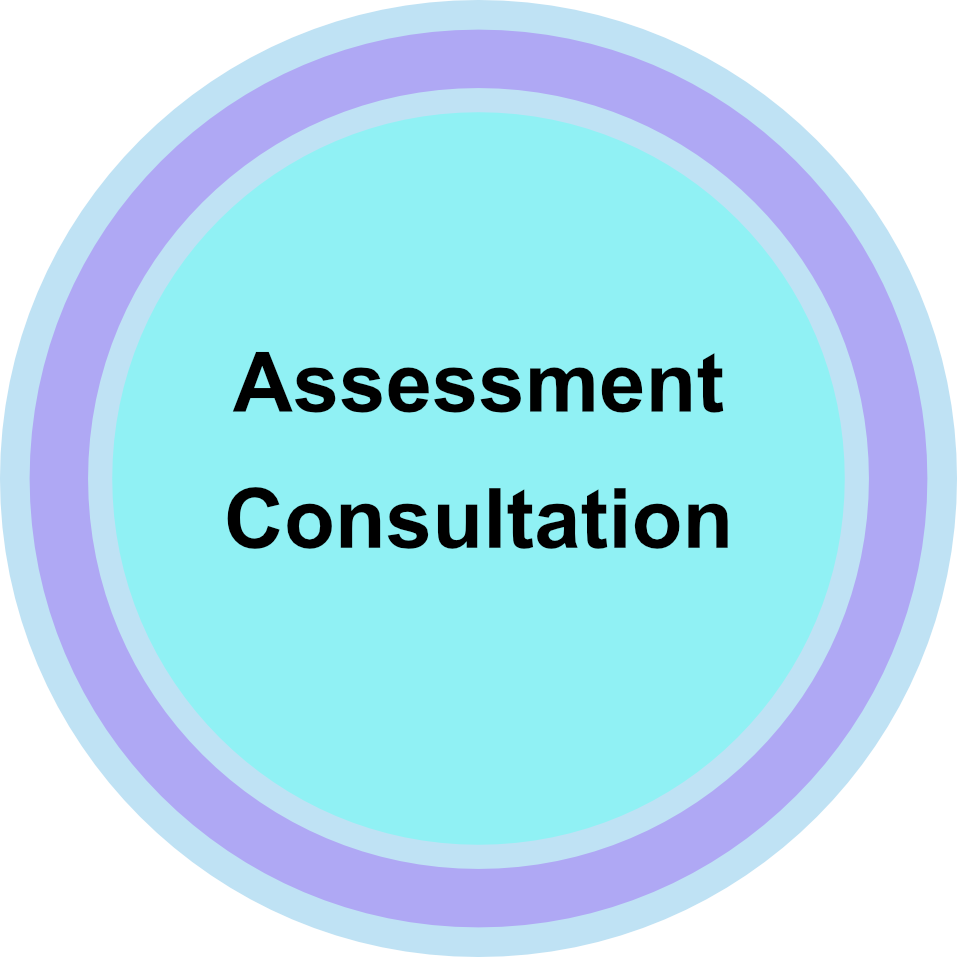 Assessment Consult.png