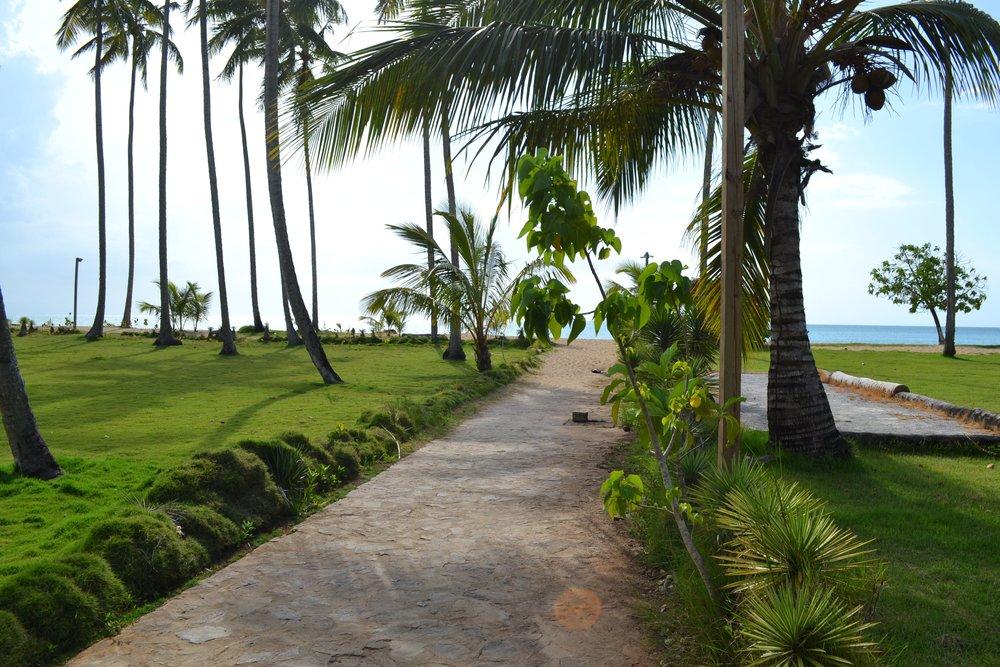 Villa for Sale Las Terrenas Garden.JPG