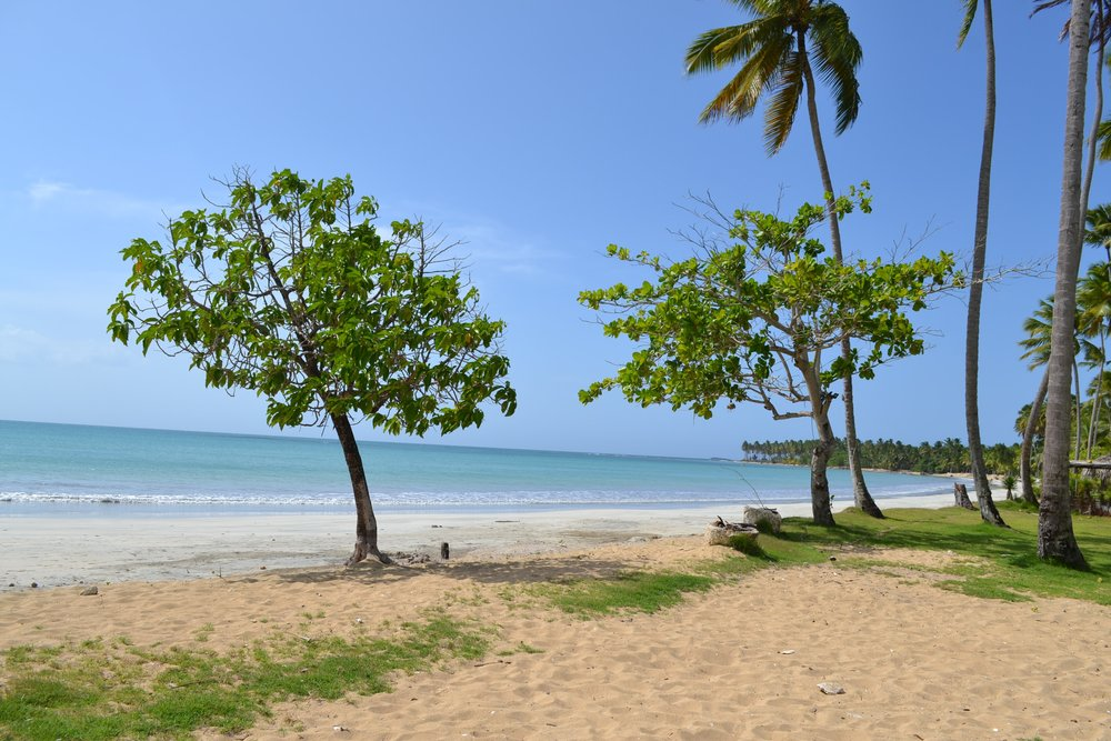 Villa for Sale Las Terrenas Beach playa Coson 1.JPG