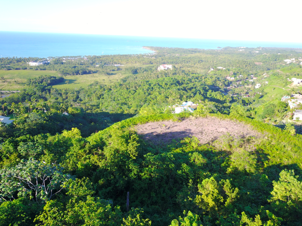 Land for Sale Las Terrenas Loma Suiza 3.png