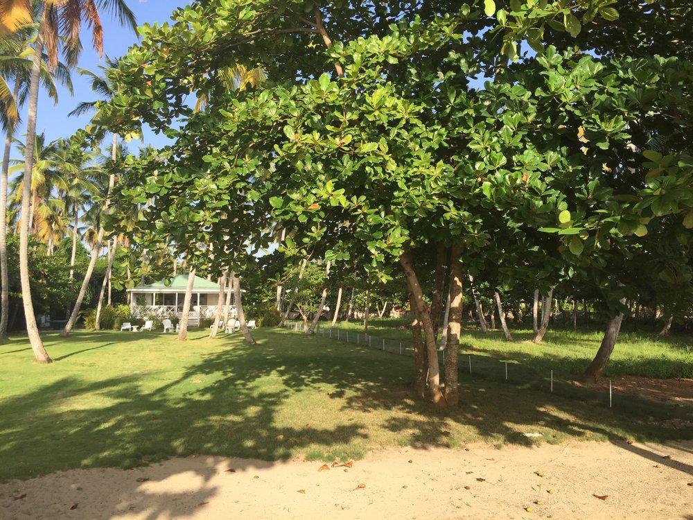 Beahcfront playa Bonita 2-min.JPG